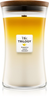 Woodwick Trilogy Fruits of Summer αρωματικό κερί μεγάλη