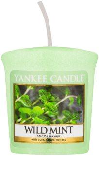 Yankee Candle Wild Mint votivna sveča