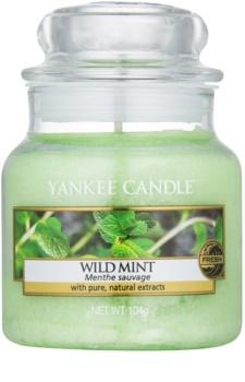 Yankee Candle Wild Mint vela perfumada  Classic pequeña