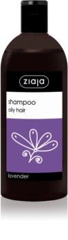 Ziaja Family Shampoo Shampoo for Oily Hair