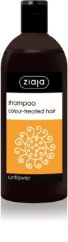 Ziaja Family Shampoo šampón pre farbené vlasy