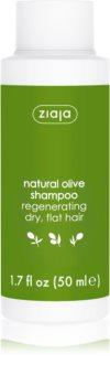 Ziaja Natural Olive regeneračný šampón pre suché vlasy