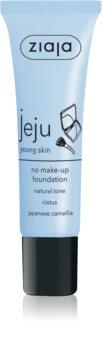 Ziaja Jeju Young Skin correcteur liquide pour un visage parfait