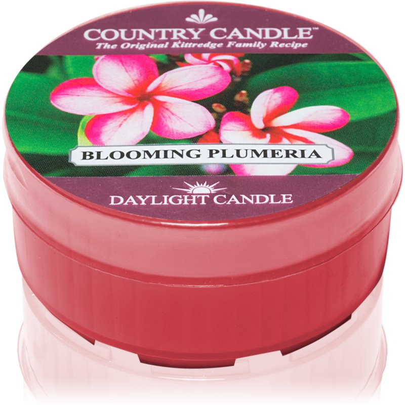 Country Candle Blooming Plumeria bougie chauffe-plat 42 g