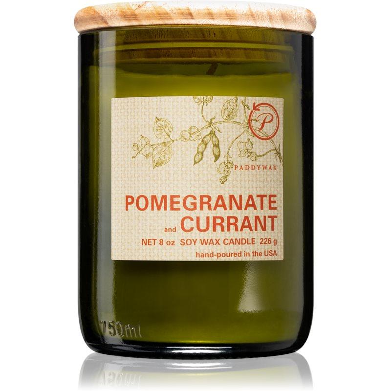 Paddywax Eco Green Pomegranate & Currant candela profumata 226 g