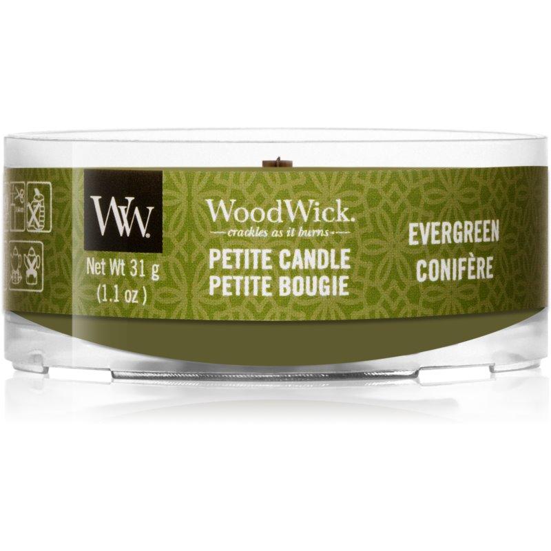 Woodwick Evergreen votivní svíčka s dřevěným knotem 31 g