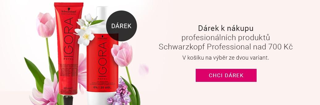 W19 GWP Schwarzkopf Professional profi