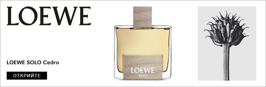 Loewe Solo Cedro