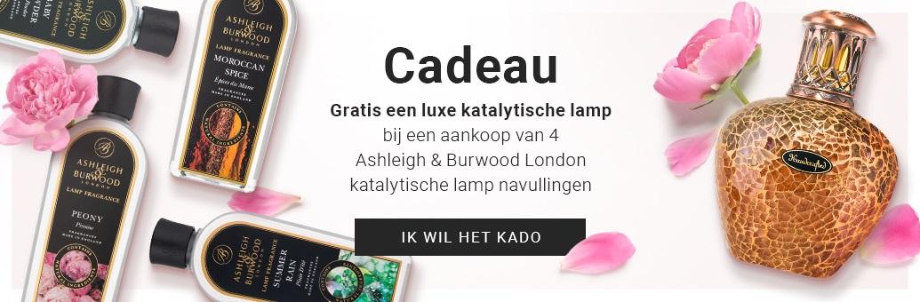 GRATIS een luxe katalytische lamp