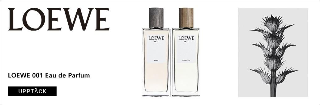 BP_Loewe_001_SE