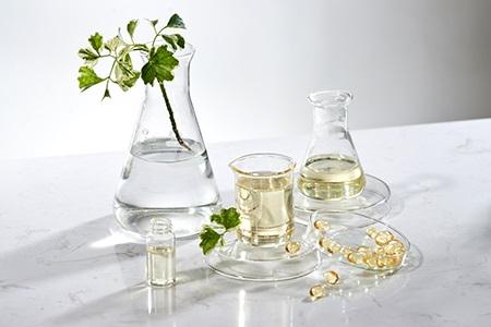 Best Cosmetic Ingredients: Try the Miracle of Retinol or Snail Slime!