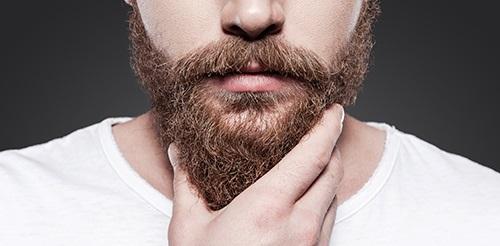 barbe maison