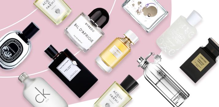 Parfumuri de nișă, Notino