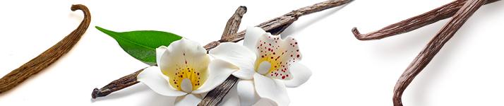 vanilkový parfum