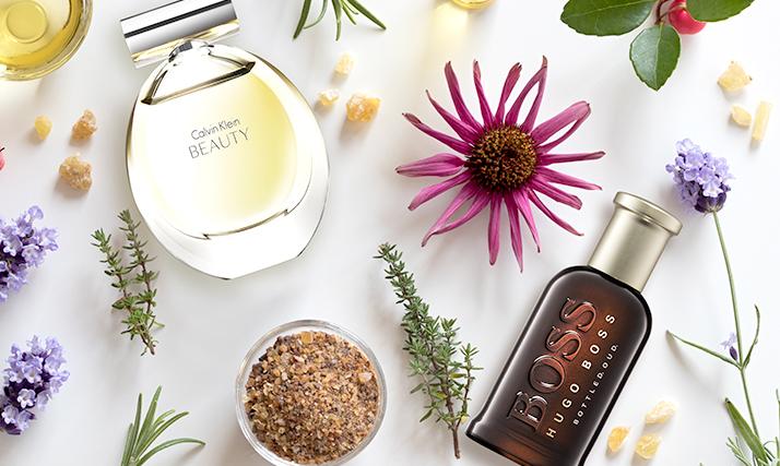 Perfumes Top 2018