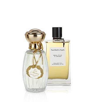 Perfumes nicho femininos