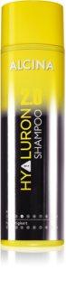 Alcina Hyaluron 2.0 Shampoo für trockenes und sprödes Haar