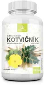 Allnature Kotvičník bylinný extrakt pro podporu zdraví
