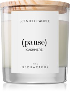 Ambientair Olphactory Cashmere scented candle (Pause)