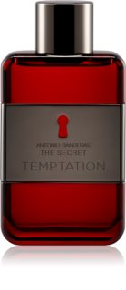 Antonio Banderas The Secret Temptation Eau de Toilette für Herren