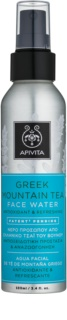 Apivita Express Beauty Greek Mountain Tea pleťová voda ve spreji