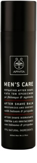 Apivita Men's Care Balsam & Propolis After Shave Balsam