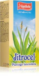 Apotheke Jitrocel čaj podporu imunitního systému, normálního trávení a dýchacího systému