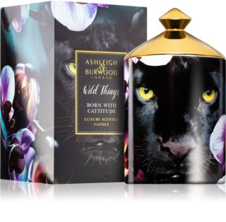 Ashleigh & Burwood London Wild Things Born With Cattitude vela perfumada