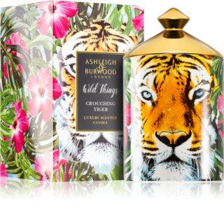 Ashleigh & Burwood London Wild Things Crouching Tiger dišeča sveča