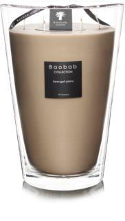 Baobab Serengeti Plains bougie parfumée