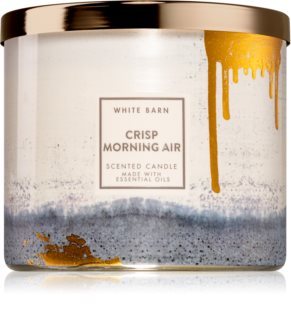 Bath & Body Works Crisp Morning Air bougie parfumée