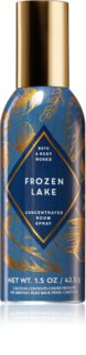 Bath & Body Works Frozen Lake sprej za dom