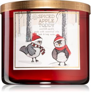 Bath & Body Works Spiced Apple Toddy αρωματικό κερί ΙΙ.