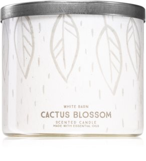Bath & Body Works Cactus Blossom