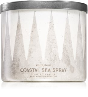 Bath & Body Works Coastal Sea Spray