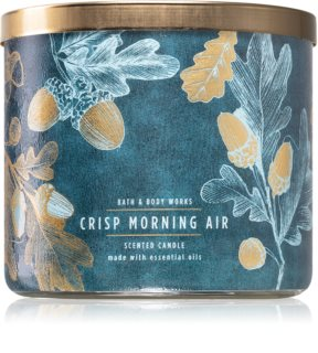 Bath & Body Works Crisp Morning Air bougie parfumée II.