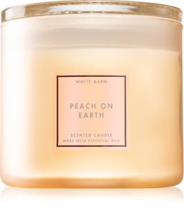 Bath & Body Works Peach On Earth scented candle