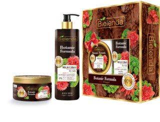 Bielenda Botanic Formula Ginger + Angelica zestaw upominkowy I.