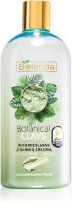 Bielenda Botanical Clays ontgiftend micellair water met Klei