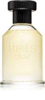 Bois 1920 Le Voluttuose La Vaniglia eau de parfum pour femme