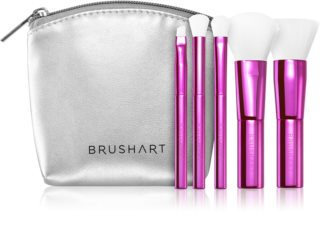 BrushArt MINI brush set with pouch