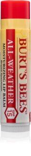 Burt's Bees Lip Care hydratačný balzam na pery v tyčinke SPF 15