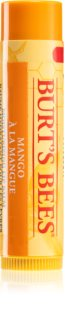Burt's Bees Lip Care Nourishing Lip Balm