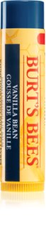 Burt's Bees Lip Care Moisturizing Lip Balm With Vanilla