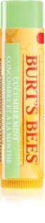 Burt's Bees Lip Care balsam do ust