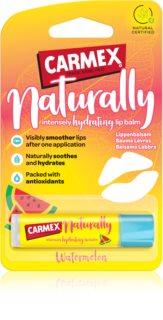 Carmex Watermelon bálsamo hidratante para lábios em stick