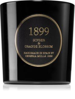 Cereria Mollá Gold Edition Premium Ginger & Orange Blossom scented candle