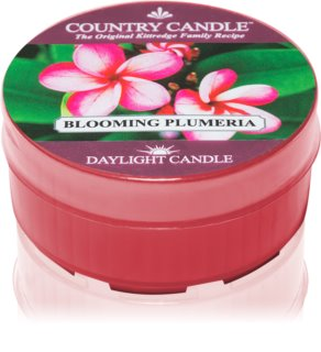 Country Candle Blooming Plumeria duft-teelicht
