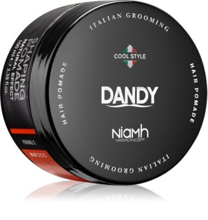 DANDY Shaping Pomade Texturizing Hair Pomade