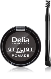 Delia Cosmetics Eyebrow Expert pomada do brwi